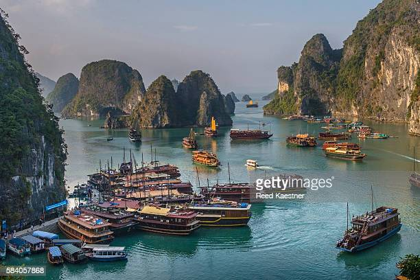 Vietnamese junks take tourists through the many limestone islands and islets in Ha long Bay in the Gulf of Tonkin of north Vietnam