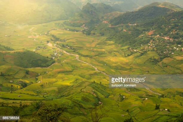vietnamese landscape rice field terraces - nautre stock pictures, royalty-free photos & images