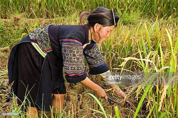 ベトナム人の女性から少数民族ブラック hmong 山岳民族 - ミャオ族 ストックフォトと画像