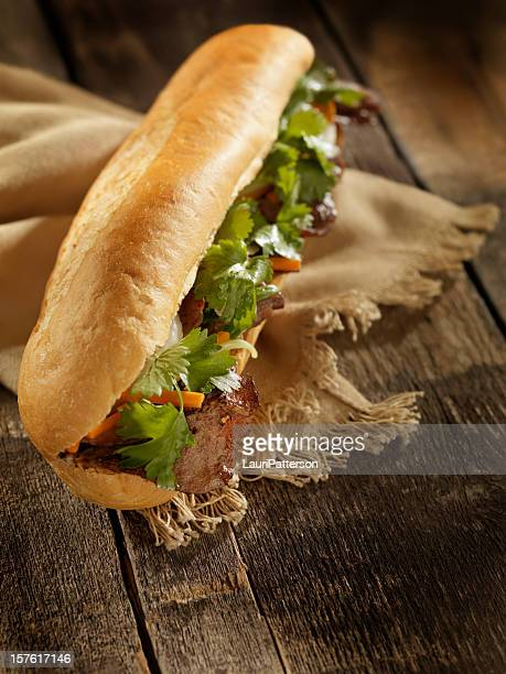 Vietnamese Sub Sandwich with Grilled Beef