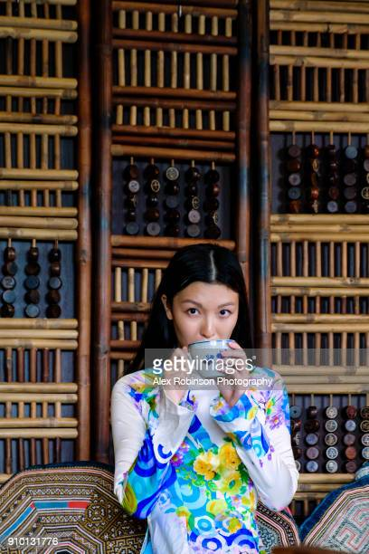 vietnamese woman in a traditional ao dai dress - traditionally vietnamese stock pictures, royalty-free photos & images