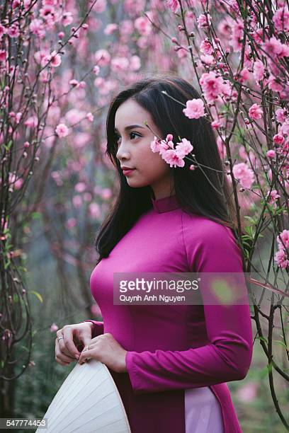 vietnamese woman in peach apricot blossom garden - pretty vietnamese women stock photos and pictures