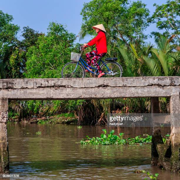 vietnamese woman riding a bicycle, mekong river delta, vietnam - mekong delta stock pictures, royalty-free photos & images
