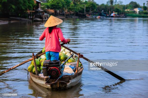 vietnamese woman selling fruits on floating market, mekong river delta, vietnam - south vietnam stock pictures, royalty-free photos & images