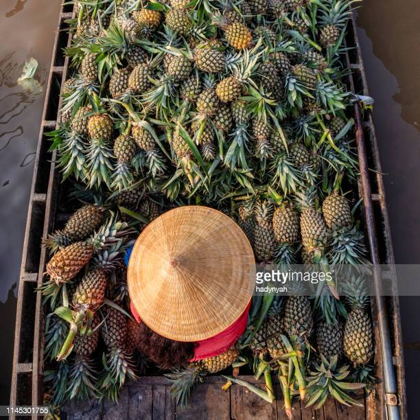 vietnamese woman selling pineapples on floating market, mekong river delta, vietnam - mekong delta stock pictures, royalty-free photos & images