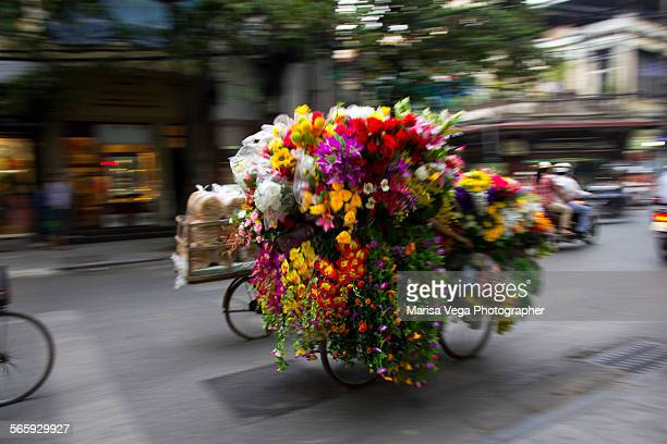 A vietnamese woman transport flowers with her bike