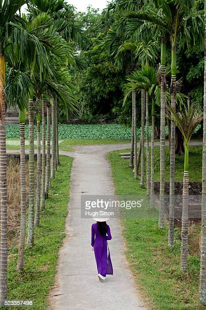 vietnamese woman walking along pathway. vietnam. - hugh sitton stockfoto's en -beelden