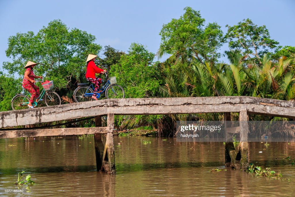 Vietnamese women riding a bicycle, Mekong River Delta, Vietnam : Stock Photo