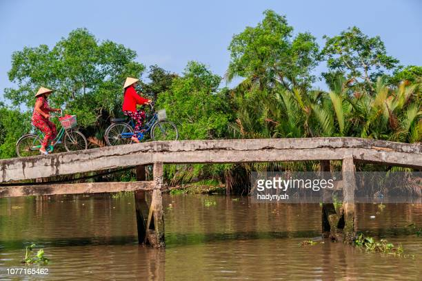 vietnamese women riding a bicycle, mekong river delta, vietnam - vietnam imagens e fotografias de stock