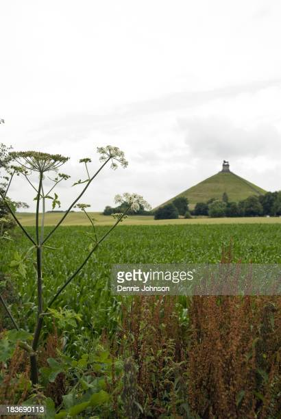 View across crops that now cover the battlefield toward the Lion's Mound , a large artificial hill built to commemorate where the Prince of Orange...