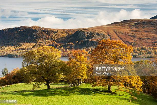 view across derwent water to castlerigg fell in the lake district, cumbria, england, uk - lake district autumn stock pictures, royalty-free photos & images