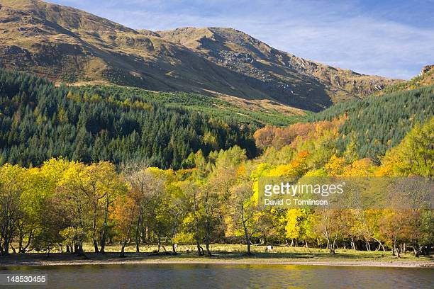 View across Loch Lubnaig to slopes of Ben Ledi, near Callander in autumn.