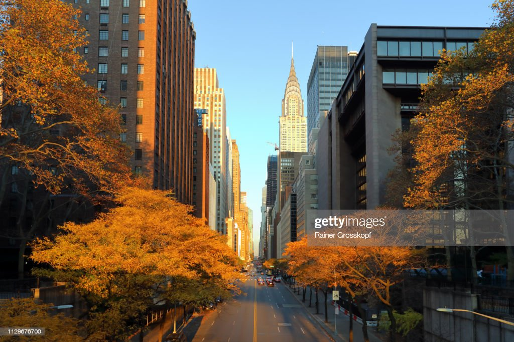 View along 42nd Street in Autumn : Stock-Foto
