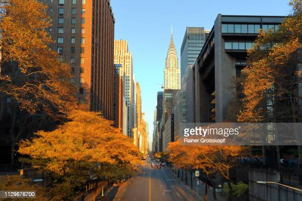view along 42nd street in autumn - rainer grosskopf stock-fotos und bilder