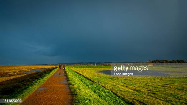 View along a sea bank path on the Norfolk coast as a thunderstorm passes over.
