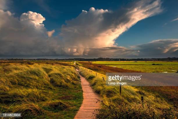 View along a sea bank path on the Norfolk coast.