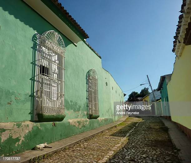 CONTENT] View along a traditional cobbled streetwith colourful houses and dog lazily lying in the sun Trinidad Cuba