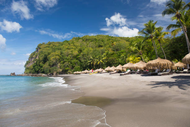 View along beach from the water's edge, Anse Chastanet, Soufriere, St. Lucia, Windward Islands, Lesser Antilles, West Indies, Caribbean, Central America