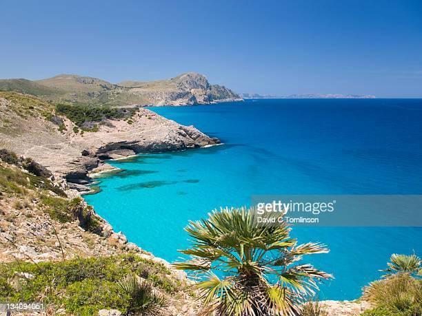 View along coast to Cap Ferrutx, Arta, Mallorca