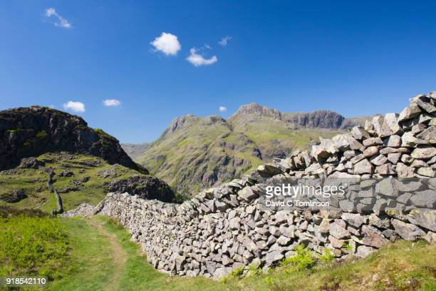 view along dry stone wall to the langdale pikes, great langdale, lake district national park, cumbria, england, uk - stone wall stock pictures, royalty-free photos & images