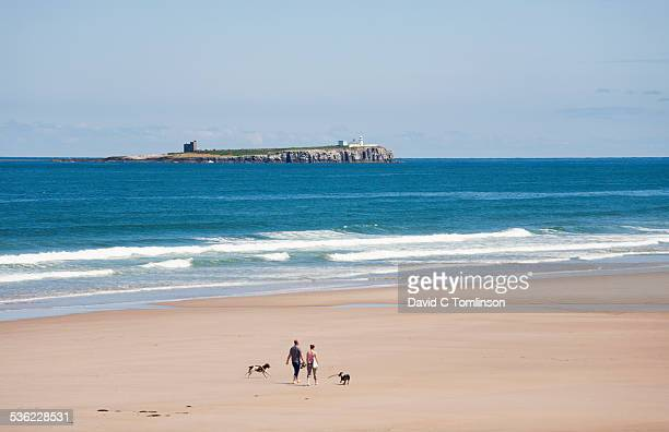 view along the beach, bamburgh - northumberland stock pictures, royalty-free photos & images