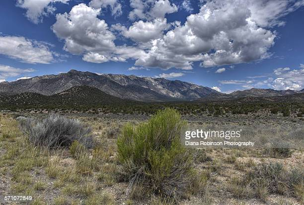 view along the great basin highway, nevada - sagebrush stock pictures, royalty-free photos & images