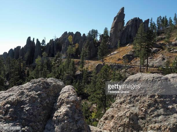 view along the needles highway, south dakota - black hills - fotografias e filmes do acervo