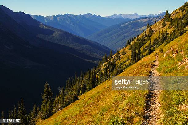 view along the pacific crest trail - pacific crest trail stock pictures, royalty-free photos & images