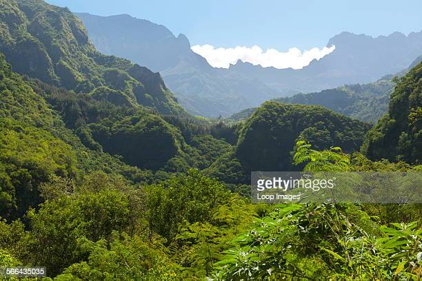 View along the road to the Cirque de Cilaos caldera on the French island of Reunion in the Indian Ocean.
