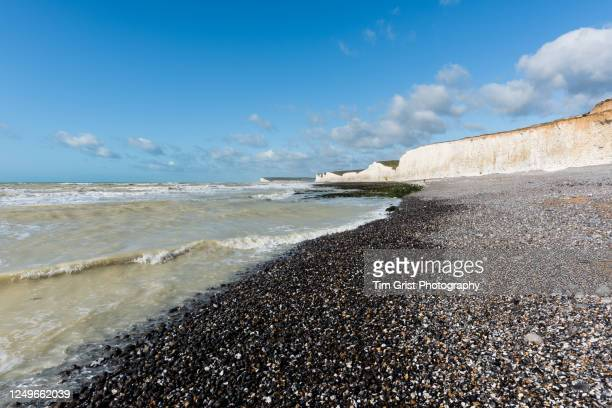 view along the seven sisters chalk cliffs and beach, east sussex, uk - geologi bildbanksfoton och bilder