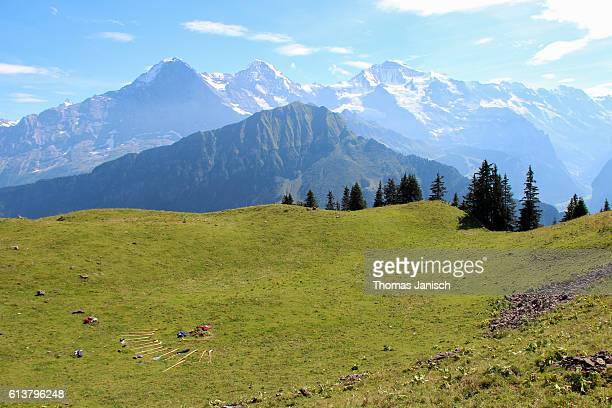 View at Eiger, Mönch and Jungfrau with swiss wooden alphorns lying in the grass, as seen from Schynige Platte