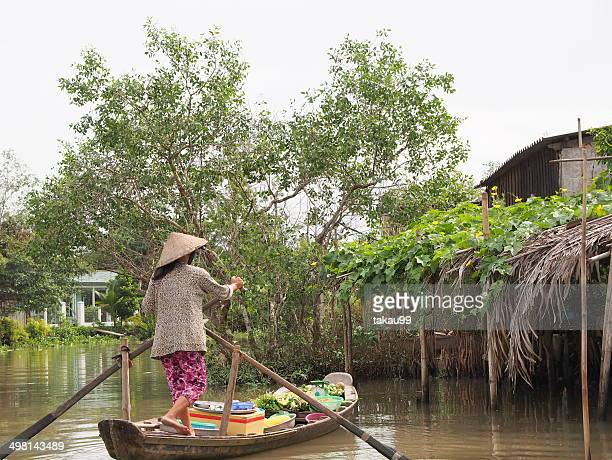 View at Mekong Delta