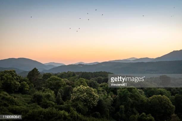 view at sunset, zonza, corsica, france - paysages photos et images de collection