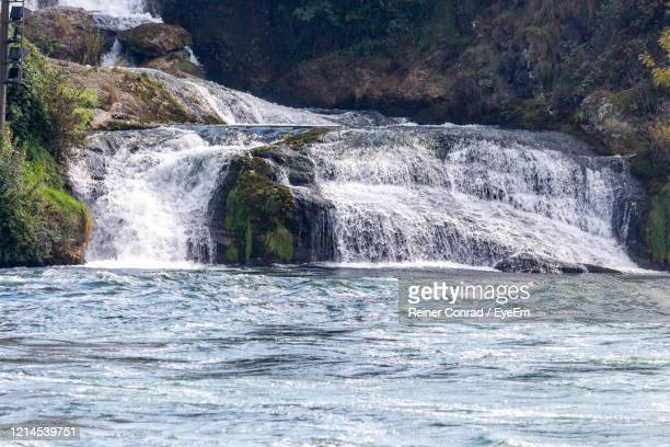 view at the rhine falls nearby schaffhausen, switzerland - rhine river stock pictures, royalty-free photos & images