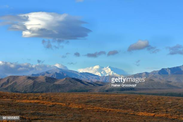 view at the snowcapped mount denali in autumn with dramatic clouds - rainer grosskopf fotografías e imágenes de stock