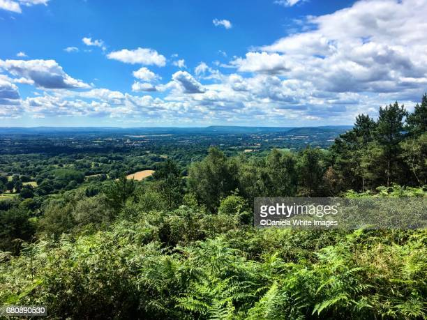 View at the top of Pitch Hill, Surrey, England