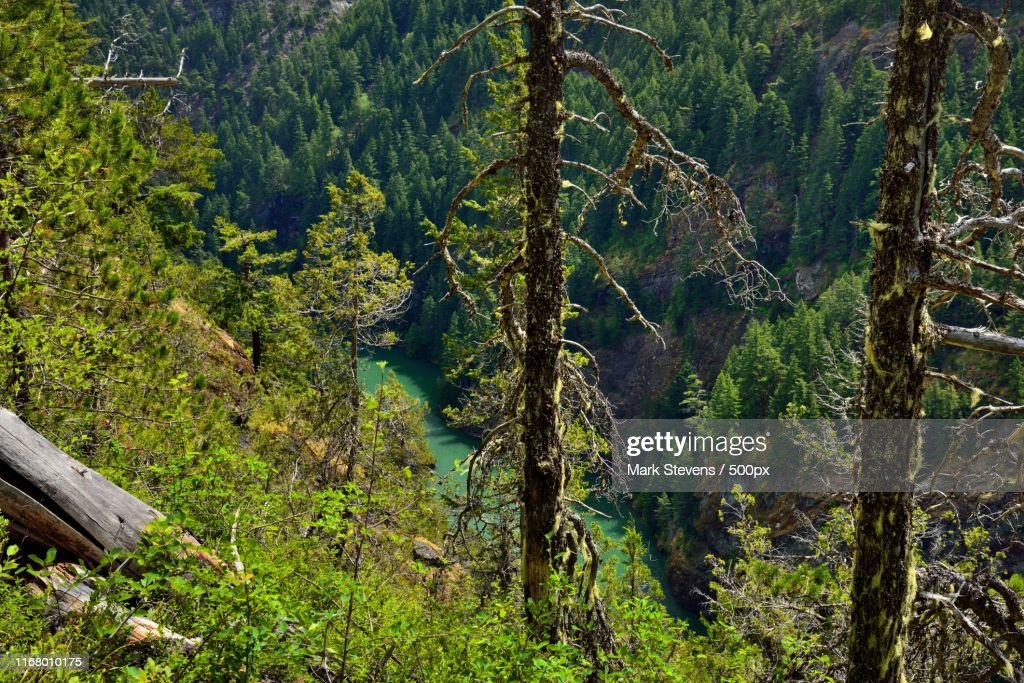 A View Down A Mountainside To The Skagit River : Stock Photo