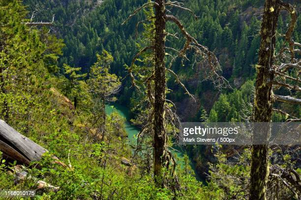 a view down a mountainside to the skagit river - diablo lake stock photos and pictures