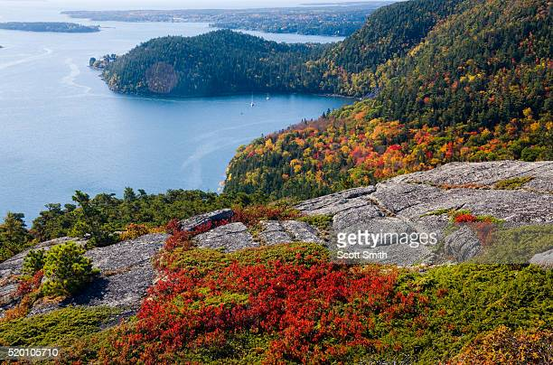 ACADIA NATIONAL PARK, MAINE. USA. View foliage in autumn & sailboat anchored in Somes Sound from Acadia Mountain in autumn. Mt. Desert Island.