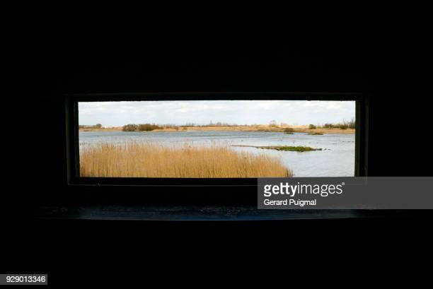 view from a bird watching tower at the rye harbour nature reserve - ancho fotografías e imágenes de stock