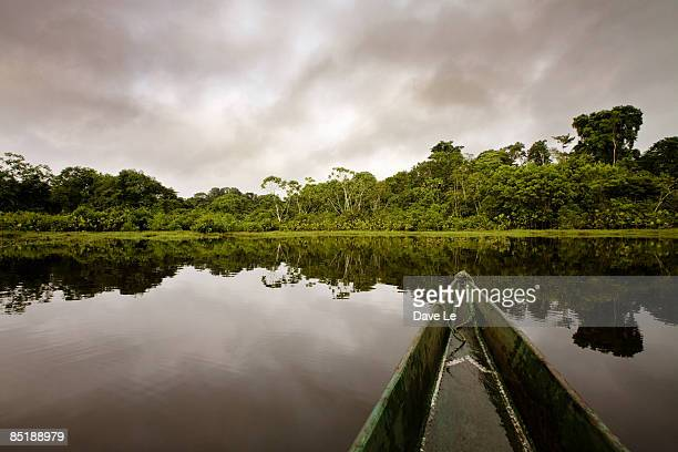 view from a canoe on the Kapawi River