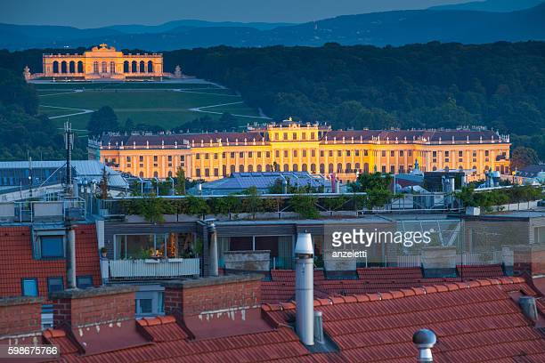 View from a rooftop towards Schonbrunn Palace