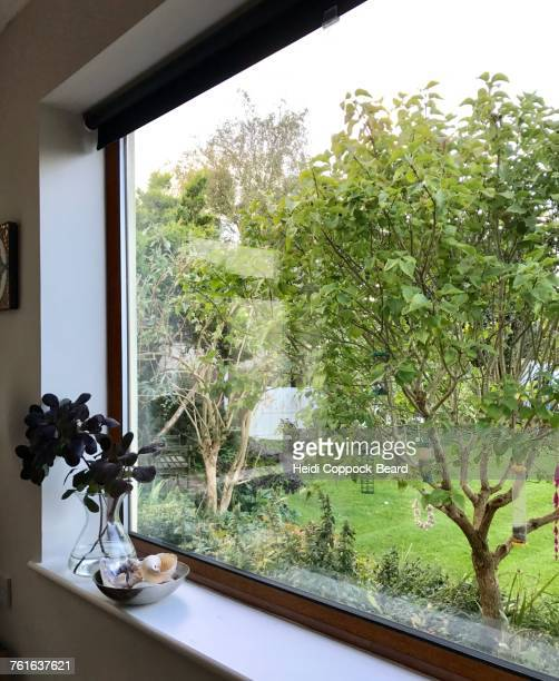 view from a window - heidi coppock beard stock pictures, royalty-free photos & images