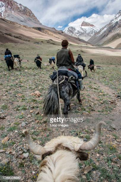 View from a yak in the Irshad valley in the Wakhan Corridor of Afghanistan.