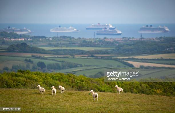 View from Abbotsbury towards the cruise ships in Weymouth bay on May 17, 2020 in Abbotsbury, United Kingdom. The prime minister announced the general...
