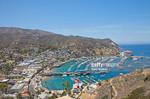 view from above of blue water, marina and hillside - catalina island stock photos and pictures