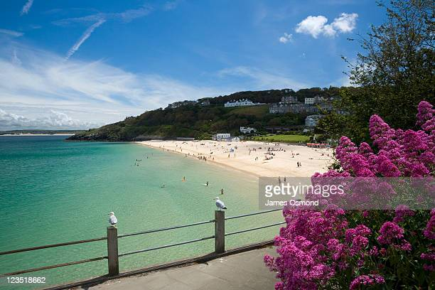 view from above porthminster beach near st. ives on the cornish coast, looking towards porthminster point on a sunny day - southwest stock pictures, royalty-free photos & images