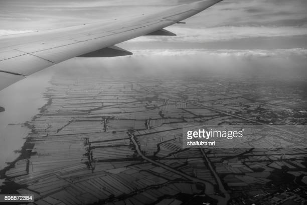 view from aeroplane above paddy fields near bangkok city in black and white with some blur effects applied - shaifulzamri 個照片及圖片檔