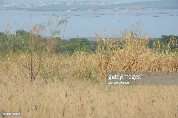 View from an illegal waste dump onto Gramacho bay in the district of Gramacho of Rio de Janeiro Brazil 9 July 2016 From here contaminated water...