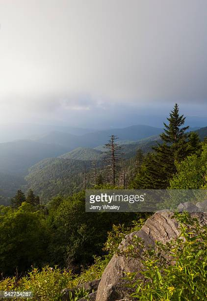 view from appalachian trail - jerry whaley stock pictures, royalty-free photos & images
